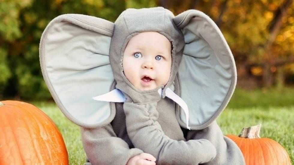 Liten Dumbo.                       (Foto: Costume-works.com)